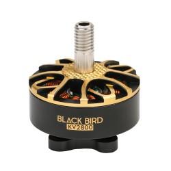 T-Motor Blackbird Edition V2 - 2800kv