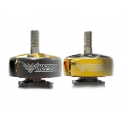 Rcinpower Wasp Major 22.6-6.6 - 1860kv