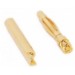 Connecteur Bullet 2mm (pair mâle/femelle)