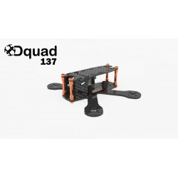 "Dquad 137 frame 3"""