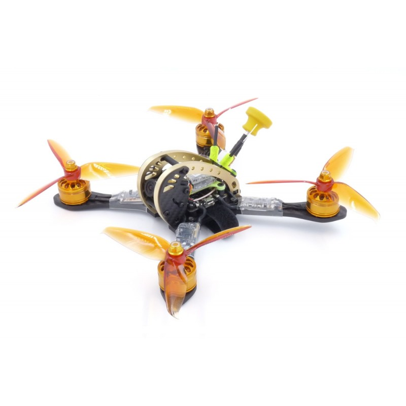 Dquad Obsession Gold V2  BNF by DFR