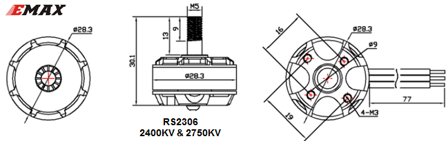rs2306 emax